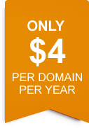 only $4 per domain per year